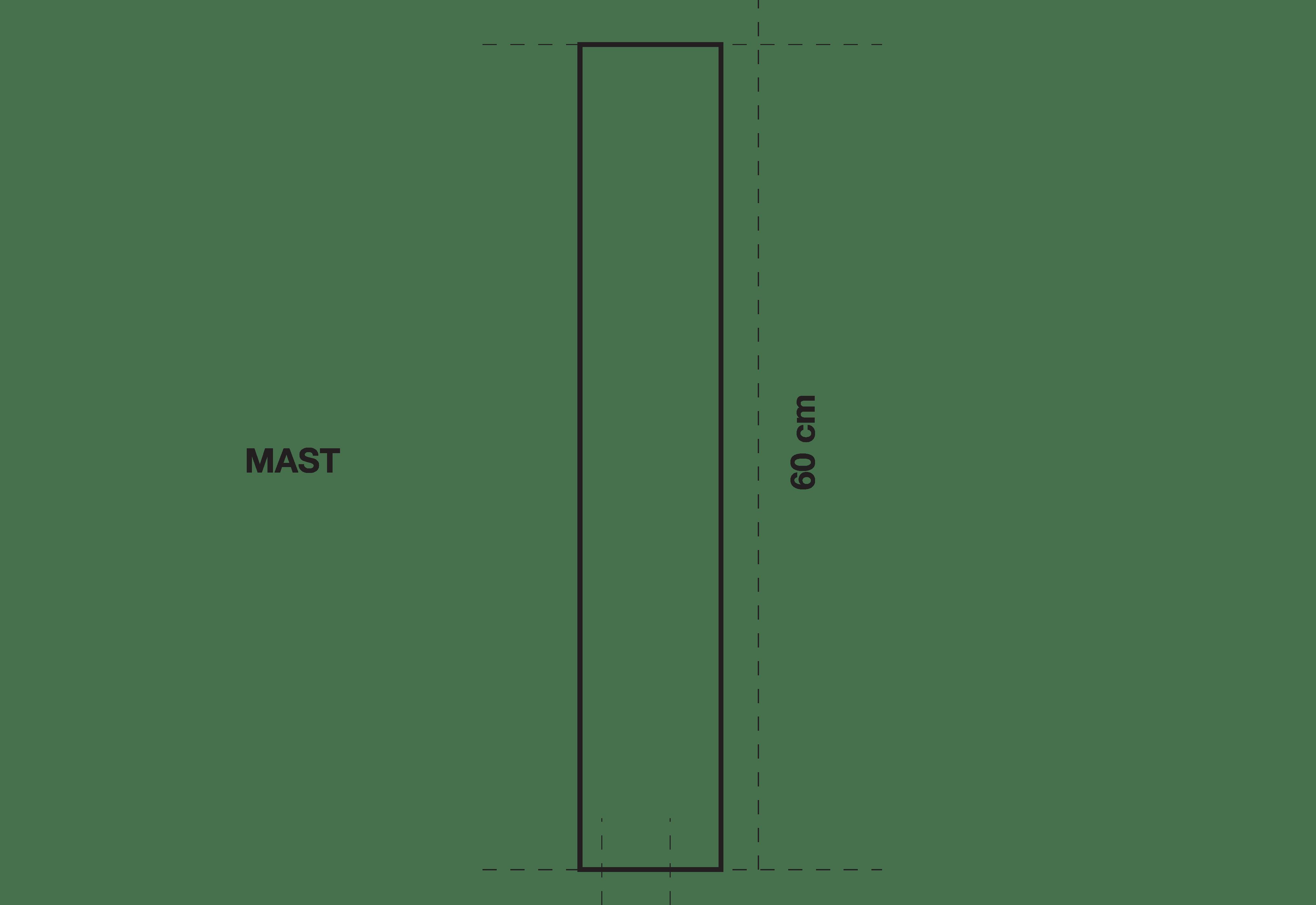 HCS-_MAST